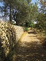 Albufeira, Country lane with dry stone wall in Enxertia (7).JPG