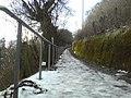 Allee oberhalb von Heslach - geo.hlipp.de - 7837.jpg