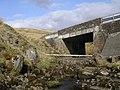 Alnwick Bridge, above Campsie Glen - geograph.org.uk - 160258.jpg