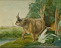 Aloys Zötl - Rhinoceros sinus (1861).jpg