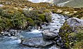 Alpine stream Mt Cook NP. NZ (23549939109).jpg