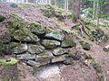 Alte Burg Altenstein 2.jpg