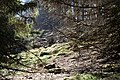 Altkönig 2020-03-25 79.jpg