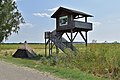 Andau - Europaschutzgebiet Waasen-Hanság - 3 - Aussichtswarte.jpg
