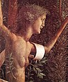 Andrea Mantegna 055 (38647193601).jpg