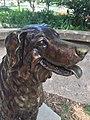 Annie the railroad dog.jpg