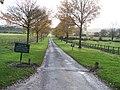 Arboretum driveway - geograph.org.uk - 1590974.jpg