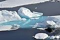 Arctic Ice (4370258605).jpg
