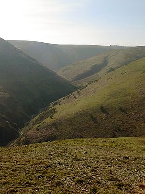 Site of Special Scientific Interest - Long Mynd, view up Ashes Hollow towards Pole Bank