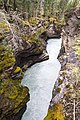Athabasca Falls - Icefields Parkway (29558120246).jpg