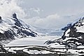 Athabasca Glacier - panoramio (2).jpg