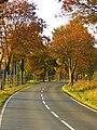 Autumn - panoramio (75).jpg