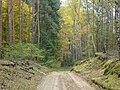 BRZEZINY - PIECZYSKA 14 - panoramio.jpg