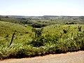 BR - panoramio (3).jpg