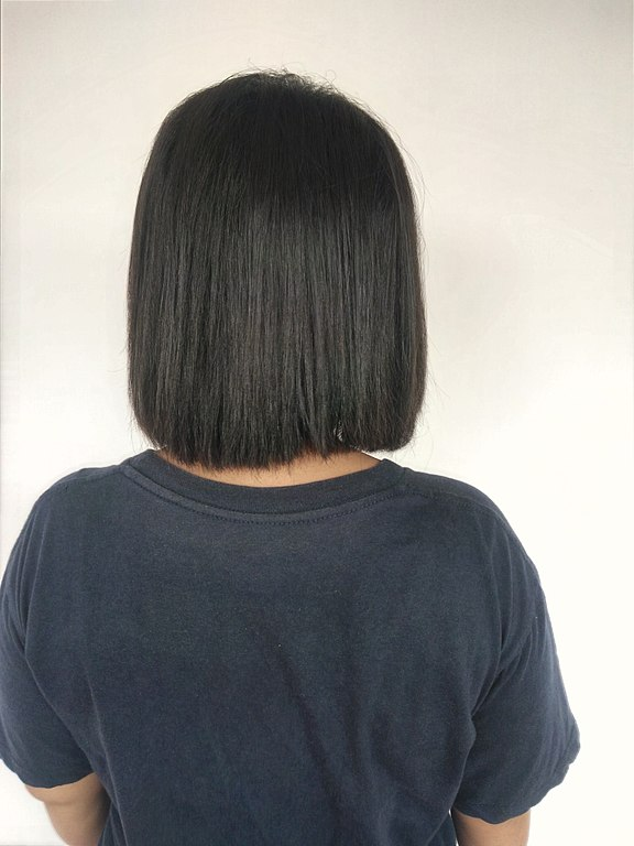 Fileback View Of Woman With Short Black Hair 1g Wikimedia