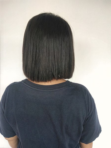 File:Back view of woman with short black hair (1).jpg ...