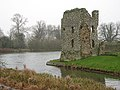 Baconsthorpe Castle - the northeast tower - geograph.org.uk - 1121163.jpg