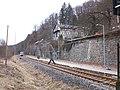 Bahnhof Rentzschmühle mit Vogtlandbahn (1).jpg