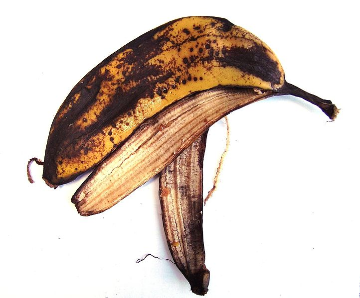 File:BananaSkin.JPG