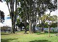 Barrios Unidos - Parque Alcázares.jpg