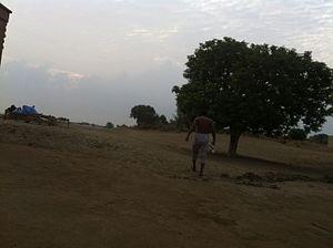 Mankera - Image: Bathal wala image