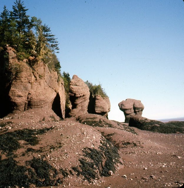 Bay of Fundy rock formations
