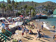 Avalon Beach In Summertime