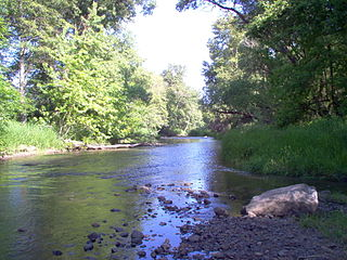 Bear Creek (Rogue River tributary) stream located entirely within Jackson County, Oregon