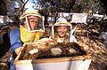 Beekeeper77-300.jpg