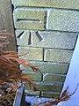 Benchmark on ^115 Priory Crescent - geograph.org.uk - 2132285.jpg