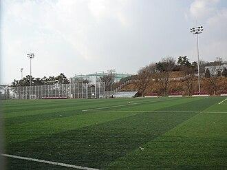 Suwon World Cup Stadium - Image: Big Bird (Aux Pitch)