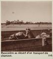 Bild från familjen von Hallwyls resa genom Egypten och Sudan, 5 november 1900 – 29 mars 1901 - Hallwylska museet - 91679.tif