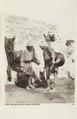 Bild från familjen von Hallwyls resa genom Egypten och Sudan, 5 november 1900 – 29 mars 1901 - Hallwylska museet - 91709.tif