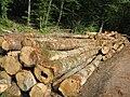 Billes de bois sur le bord d'une route - 005.JPG
