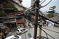 BirG103-Dharamsala.jpg