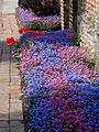 Bishop's Palace Garden - geograph.org.uk - 1288202.jpg