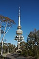 Black Mountain Telecom Tower - 1 (3071703218).jpg