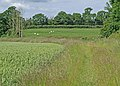 Blaken Knob farmland - geograph.org.uk - 851176.jpg