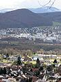 Blick auf Wyhlen mit alter Rheinsaline 3.jpg