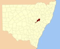 Bligh NSW