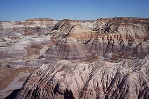 Petrified Forest National Park - Painted desert and petrified logs seen from Blue Mesa