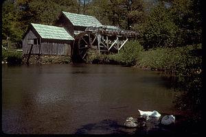 Blue Ridge Parkway BLRI8293.jpg