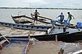 Boatmen Life - River Matla - Godkhali - South 24 Parganas 2016-07-10 4826.JPG