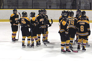 Boston Blades -  Nine players of United States women's national ice hockey team were rostered on the Boston Blades for 2011–12 CWHL season.