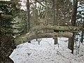 Brackley Day-use Park, National Park, PEI (11906300514).jpg
