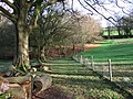 Bridestowe Footpath 8 - geograph.org.uk - 319373.jpg