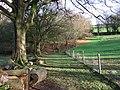 Bridestowe Footpath 8 - geograph.org.uk - 319373.jpg
