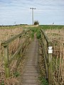 Bridge over drain - geograph.org.uk - 1216050.jpg