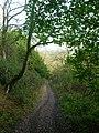 Bridleway Descending Bury Hill - geograph.org.uk - 1020348.jpg