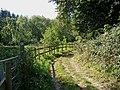 Bridleway and Geopark Way by Lower Astley Wood - geograph.org.uk - 1490233.jpg